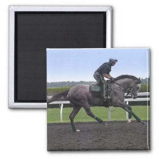 Grey race horse magnet