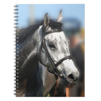 Grey Race Horse Racing Portrait , sports photo Spiral Notebook