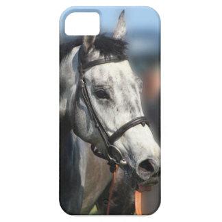 Grey race horse sports portrait iPhone SE/5/5s case