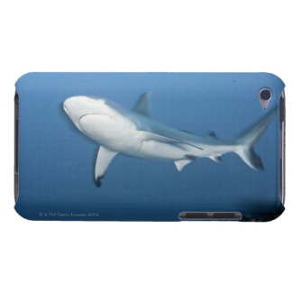 Grey reef shark (Carcharhinus amblyrhynchos) iPod Touch Cover