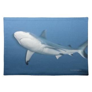 Grey reef shark (Carcharhinus amblyrhynchos) Placemat