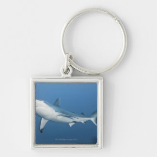 Grey reef shark (Carcharhinus amblyrhynchos) Silver-Colored Square Keychain