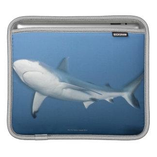 Grey reef shark (Carcharhinus amblyrhynchos) Sleeve For iPads
