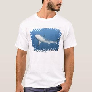 Grey reef shark (Carcharhinus amblyrhynchos) T-Shirt