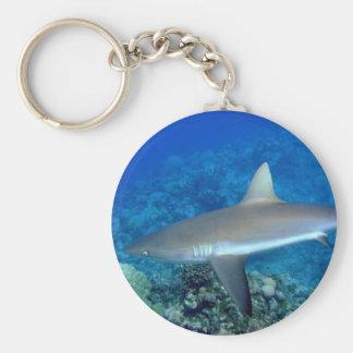 Grey Reef Shark Keychain