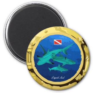 Grey Reef Shark - Magnet