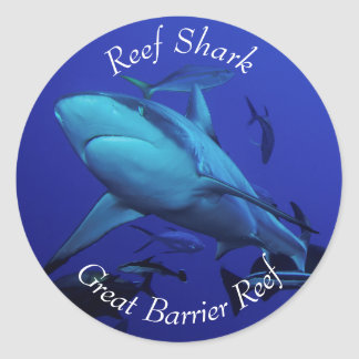Grey Reef Shark on the Great Barrier Reef Classic Round Sticker