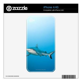 Grey reef sharks (Carcharhinus amblyrhnchos) Skins For iPhone 4S