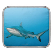 Grey reef sharks (Carcharhinus amblyrhnchos) Sleeve For iPads