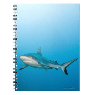 Grey reef sharks (Carcharhinus amblyrhnchos) Spiral Notebook