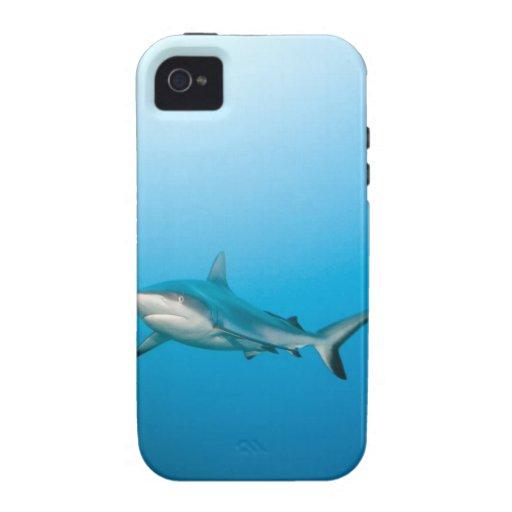 Grey reef sharks (Carcharhinus amblyrhnchos) Vibe iPhone 4 Case
