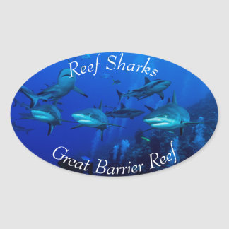 Grey Reef Sharks on the Great Barrier Reef Oval Sticker