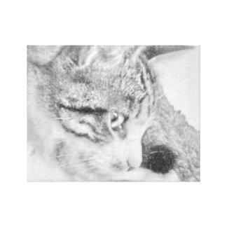 Grey Scale Cat Canvas Print