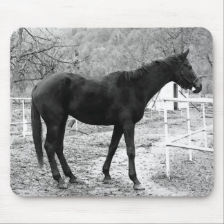 Grey Scale Pop Art Horse Mouse Pad