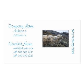 Grey Seal Business Card