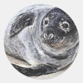 Grey Seal Classic Round Sticker