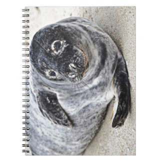 Grey Seal Note Books