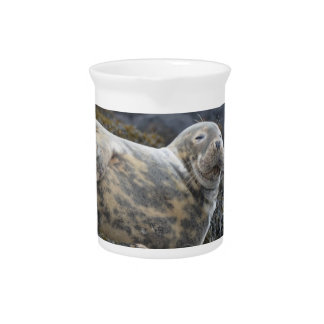 Grey Seal Pitchers