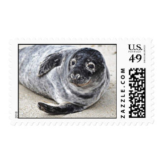 Grey Seal Postage