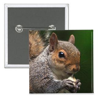 Grey Squirrel 2 Inch Square Button
