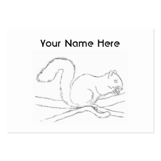 Grey Squirrel, Eating a Nut. Sketch. Large Business Cards (Pack Of 100)