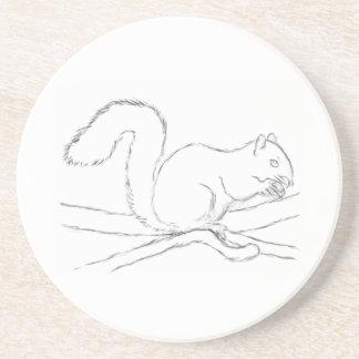Grey Squirrel, Eating a Nut. Sketch. Coaster