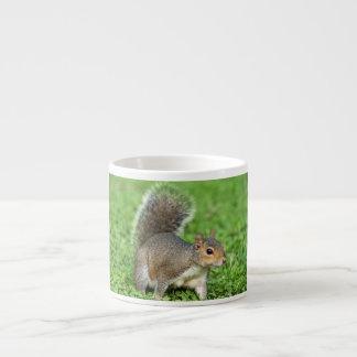 grey squirrel espresso cup