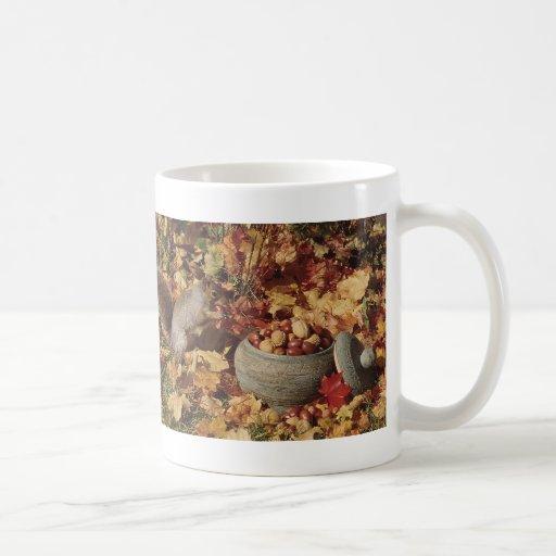 Grey Squirrel Feeding Coffee Mug
