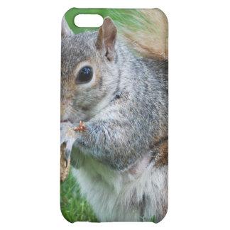 Grey Squirrel iPhone 4 Case