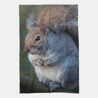 Grey Squirrel Kitchen Towel