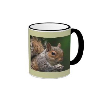 Grey Squirrel Ringer Coffee Mug
