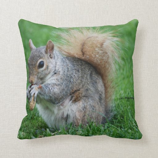 Grey Squirrel Pillow