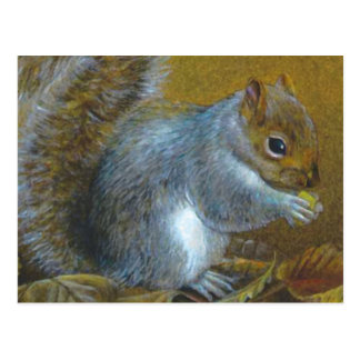 Grey squirrel with nut art painting postcard