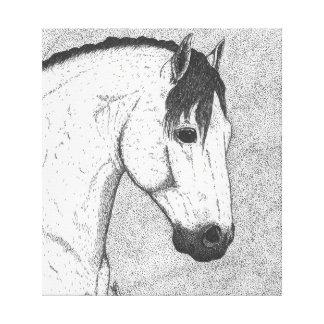 """Grey Stallion"" Canvas Print"