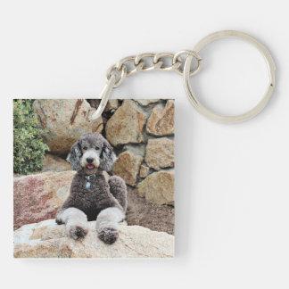 Grey Standard Poodle Dog enjoys Carmel Beach Keychain