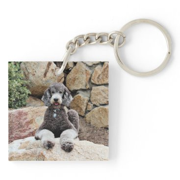 Beach Themed Grey Standard Poodle Dog enjoys Carmel Beach Keychain