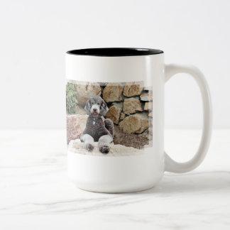 Grey Standard Poodle Dog enjoys Carmel Beach Two-Tone Coffee Mug