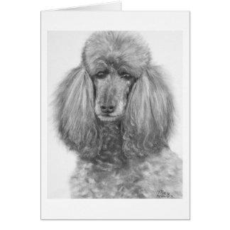 Grey Standard Poodle jpg Card