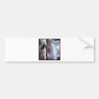 Grey Standardbred Car Bumper Sticker