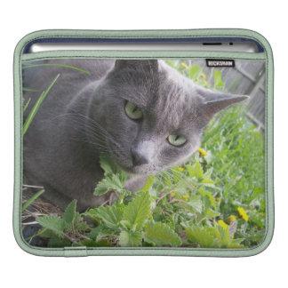 grey summer cat kitty kitten nature iPad sleeve