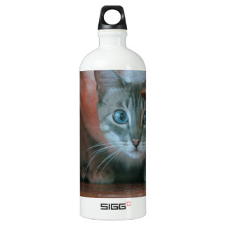 Grey tabby cat crouching under wooden table water bottle