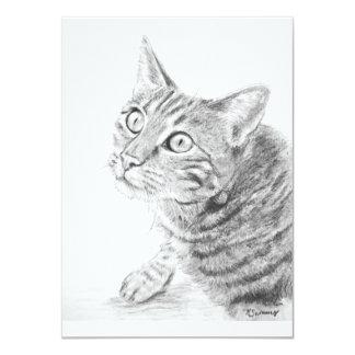 Grey Tabby Cat Drawing Card