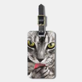 Grey Tabby cat licking paw Bag Tag