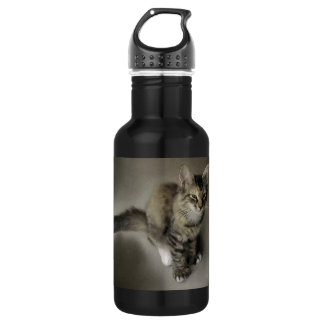 Grey Tabby Painting Stainless Steel Water Bottle