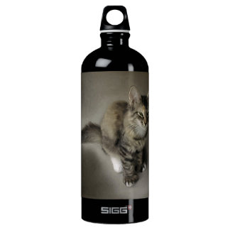 Grey Tabby Painting Water Bottle