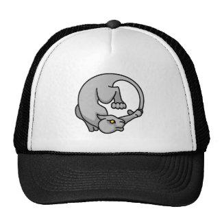 Grey Tailchaser Hat