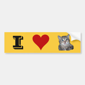 Grey Tiger Kitten with Blue Eyes Bumper Sticker