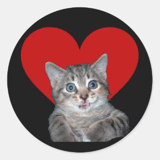 Grey Tiger Kitten with Blue Eyes Classic Round Sticker