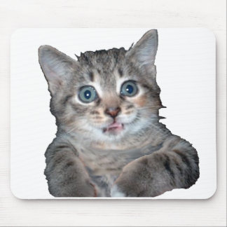 Grey Tiger Kitten with Blue Eyes Mouse Pad