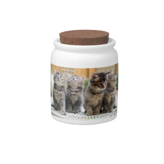 Grey Tiger Striped Kittens Candy Jar